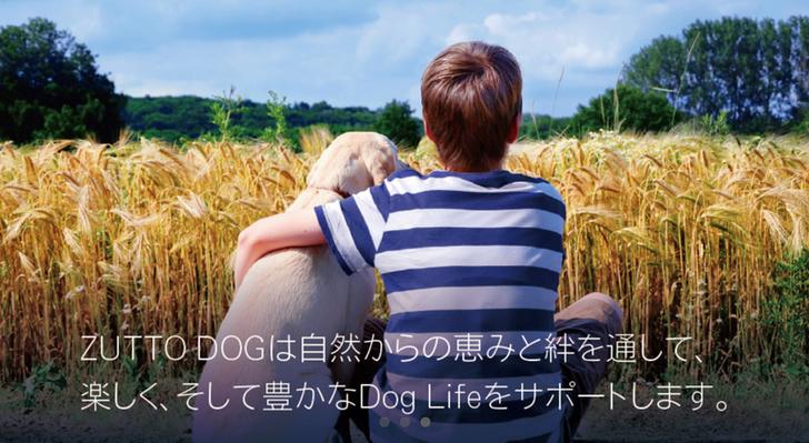zuttodog1