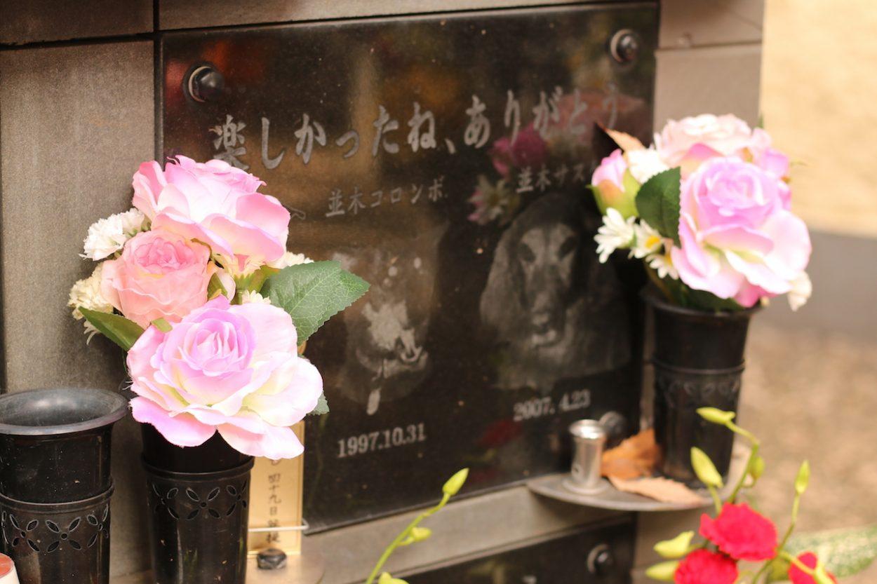 モラキジドッグ ペット霊園